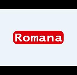 Romana Paint